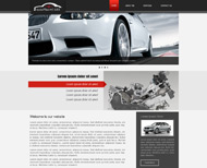 Portfolio / 2013 / Auto Plus Care Website Design